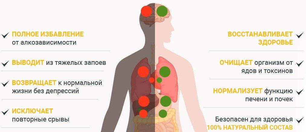 Чем вывести алкоголь из организма в домашних условиях