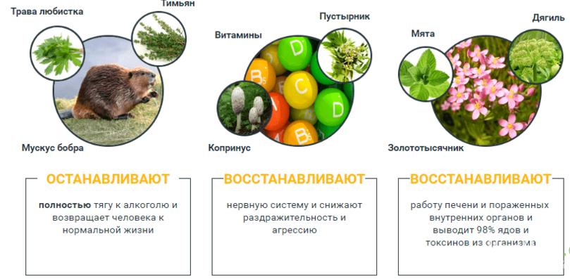 Ингредиенты и их свойства