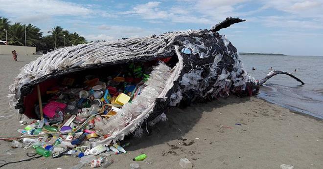 Пластиковое загрязнение