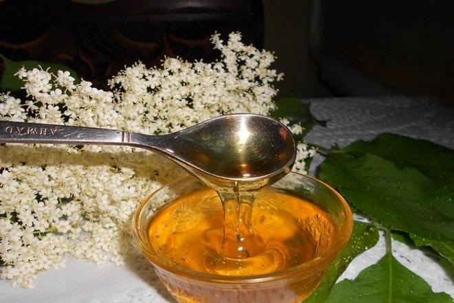 Мед из бузины