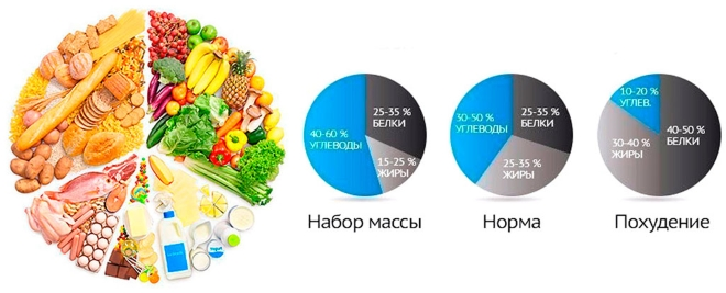 Нормы потребления белка