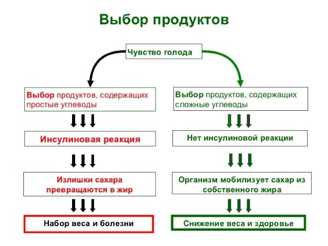 Механизм действия углеводов