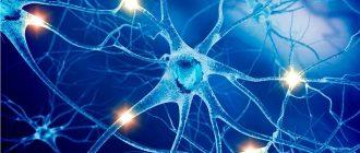 Как укрепить нервную систему и психику и вылечить невроз