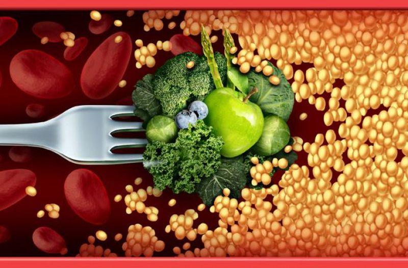 Чем полезен холестерин?