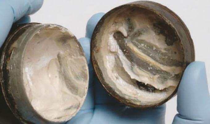 Зачем в Древнем Риме чистили зубы мозгами летучей мыши? Сколько зубов было у 20 летнего римлянина?