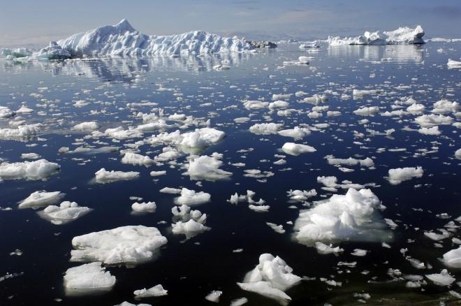 Экологические проблемы России: пути решения ситуации