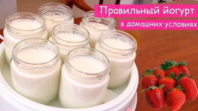 Как сделать йогурт в домашних условиях: рецепты приготовления