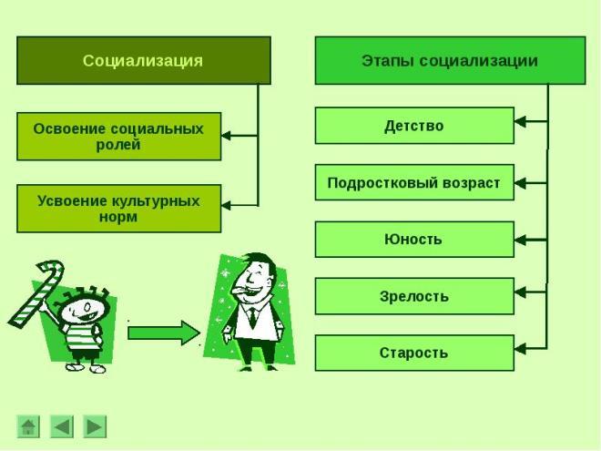 Социализация - это что, основные типы и этапы
